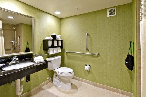 Hampton Inn Asheville-Tunnel Road - Accessible Bathroom