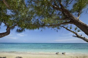 Viva Wyndham Fortuna Beach Hotel - Beach
