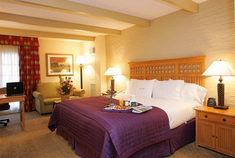 Doubletree Hotel San Antonio Airport Odanın görünümü