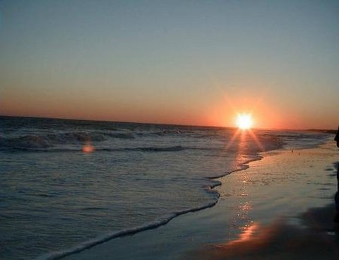 在米德尔顿广场酒店 - Charleston Local Beaches