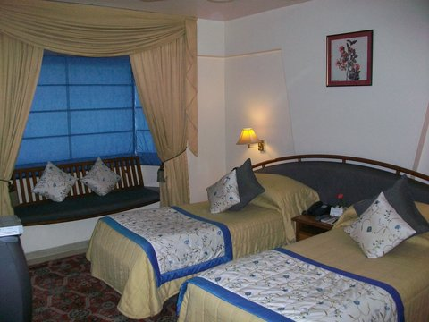 Hotel Parle International - Executive Double Room