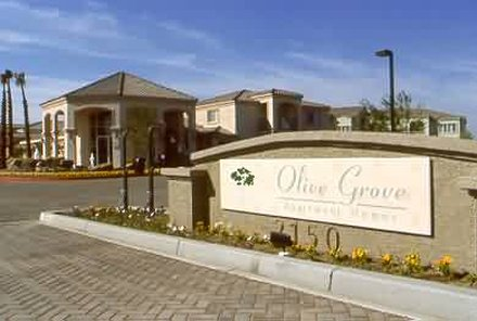 Olive Grove Apartments - Exterior