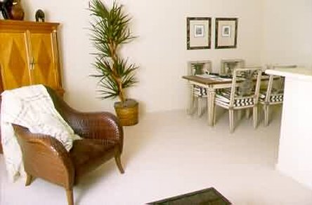 Olive Grove Apartments - Guest Room
