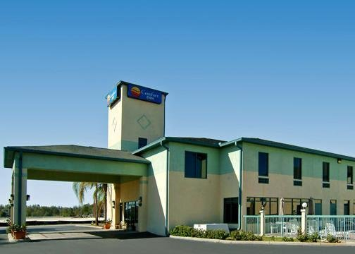 Comfort Inn Wesley Chapel