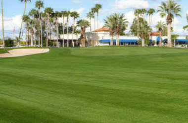 Arizona Golf Resort