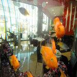 Hotel Icaria Barcelona - Restaurant