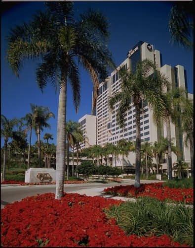 The Peabody Orlando - Orlando, FL