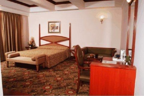 Hotel Vikram - Luxury Room