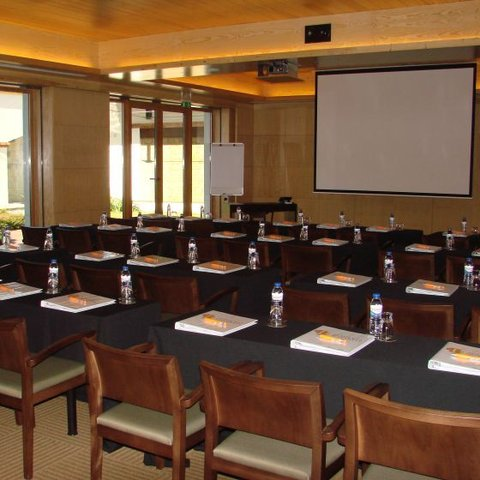 Hotel Lusitano - Conferrence Room