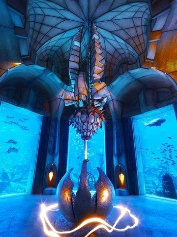 迪拜棕榈岛亚特兰蒂斯酒店 - Lost Chambers