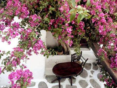 Psarou Garden Hotel - Patio
