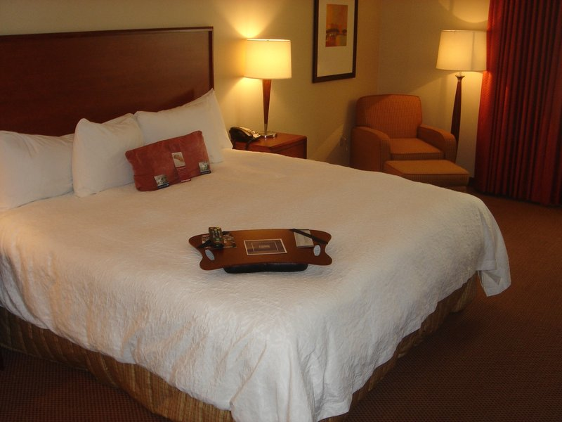Hampton Inn & Suites Denver-Downtown, CO Vista do quarto