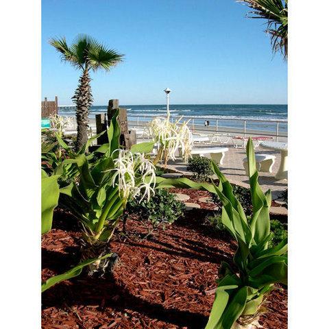 Daytona Inn Beach Resort - Garden View