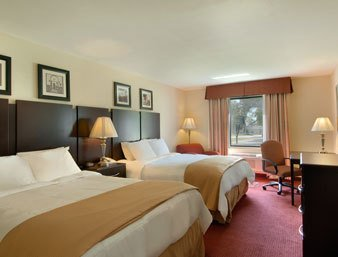 Hilton Garden Inn Charlotte/Ayrsley Vista do quarto