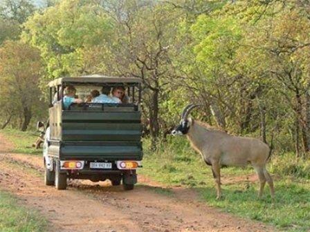 Nkambeni Safari Camp - Exterior