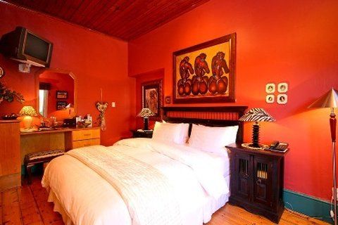 بيت ضيافة 40 وينكس غرين بوينت - Room