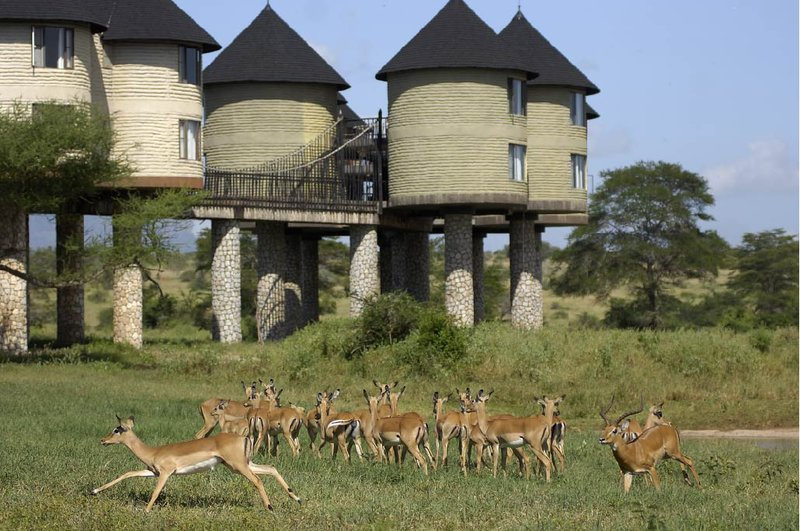Hotel.de - Sarova Salt Lick Game Lodge