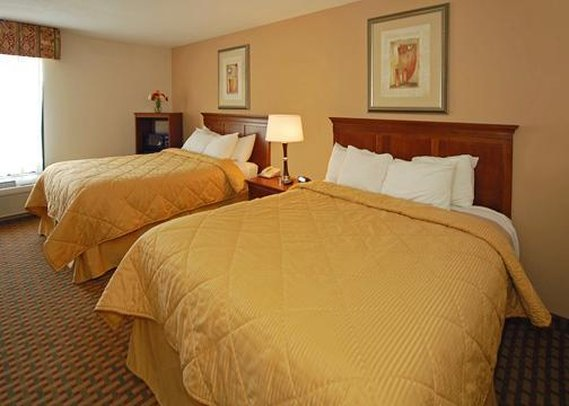 Comfort Inn Dawsonville