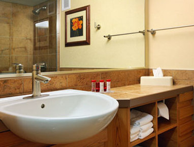 Ramada Tropics Resort / Conference Center Des Moines - Bathroom