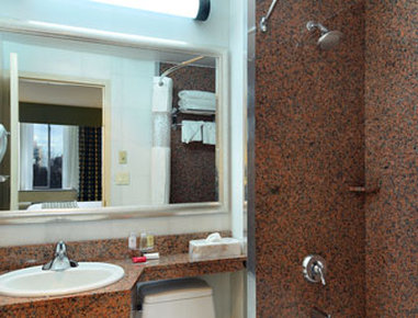 Ramada Jamaica/Queens - Bathroom