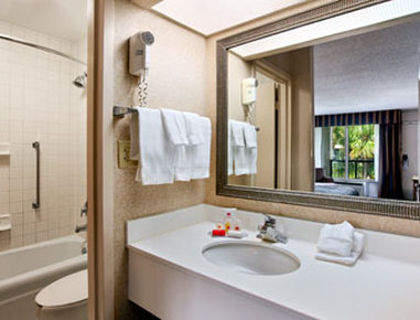 Holiday Inn Hotel & Suites FLORENCE SC @ I-95 & US HWY 52 - Bathroom