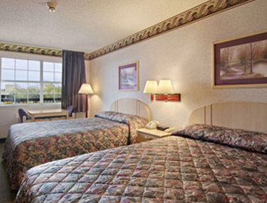 Super 8 Richardson Dallas - Standard Two Queen Bed Room