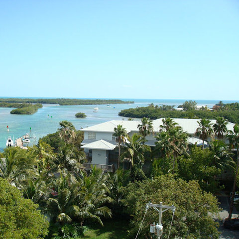 Coconut Mallory Resort and Marina by Kees Vacations - Picture
