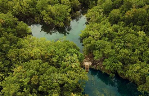 Tortuga Bay Hotel - Natural Springs at the Ecological Reserve