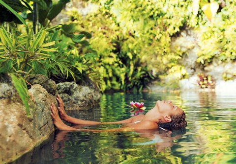 Tortuga Bay Hotel - Ecological Reserve With Natural Springs