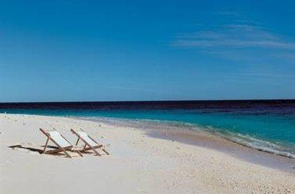 Wilson Island Resort - Beach