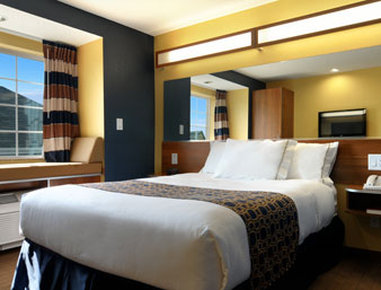 Microtel Inn & Suites by Wyndham Columbus/Near Fort Benning - Standard One Queen Bed Room
