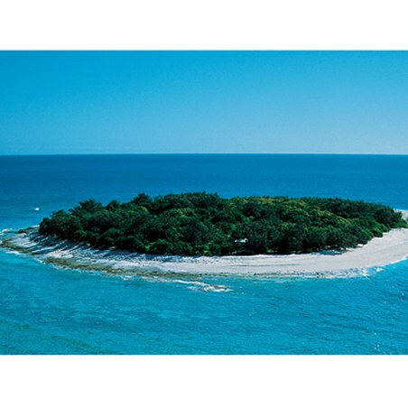 Wilson Island Resort - Wilson Island Aerial