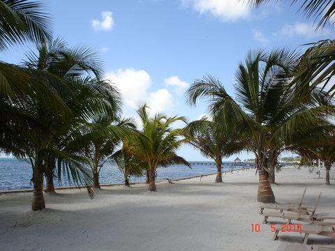 Coconuts Caribbean Resort - Beach Area