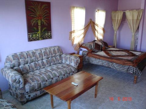 Coconuts Caribbean Resort - Suite Room