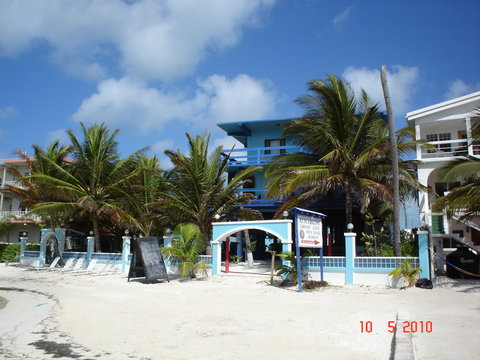 Coconuts Caribbean Resort - Front Of The Hotel