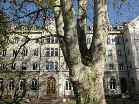 Bildungszentrum 21 Basel - Exterior view
