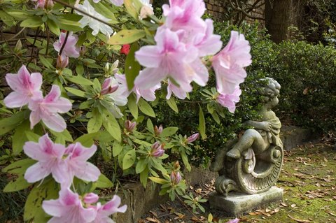 Battery Carriage House Inn - Relax and renew in our lovely garden