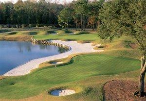 Golf - Marriott Vacation Club Barony Beach Hilton Head