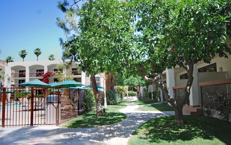 Hotels Near Palm Springs Off The