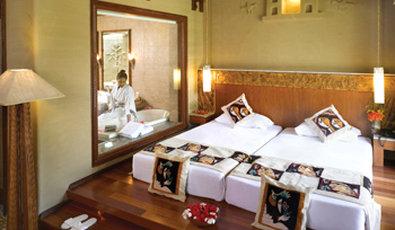 Vedic Village Spa Resort - Earth Villa