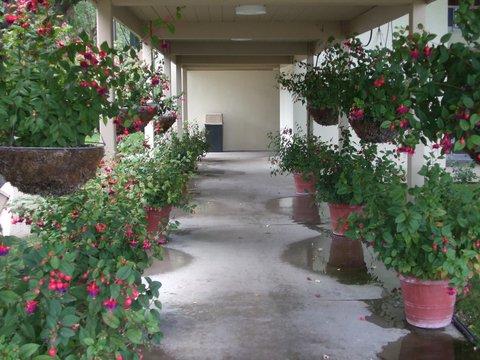 Rose Garden Inn - Exterior View