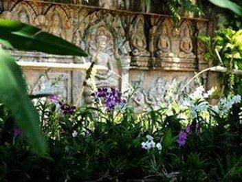 Thavorn Palm Beach Resort Karon Beach - Orchid Garden