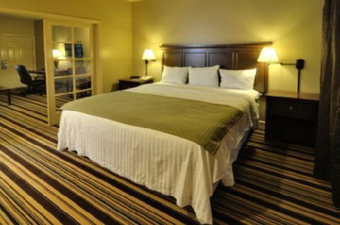 University Park Inn & Suites - Single King Suite