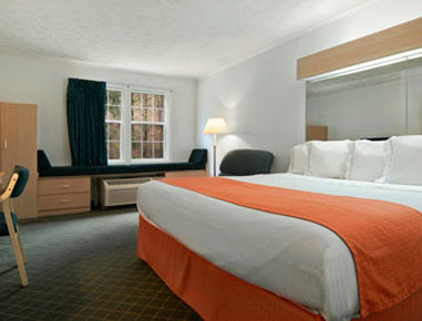 Microtel Inn & Suites by Wyndham Athens - One King Bed