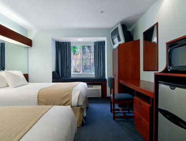 Microtel Inn & Suites by Wyndham Gardendale - Standard Double Room
