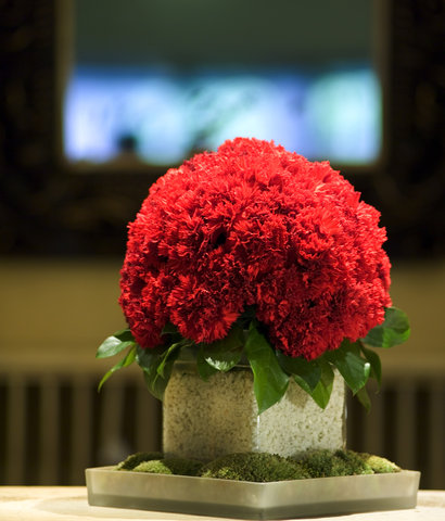 Hotel Angleterre - Red Carnation