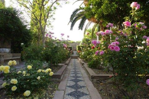 Argentikon Luxury Suites - Garden