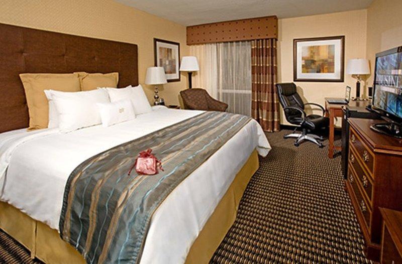 Crowne Plaza Hotel Dallas Downtown Vista do quarto