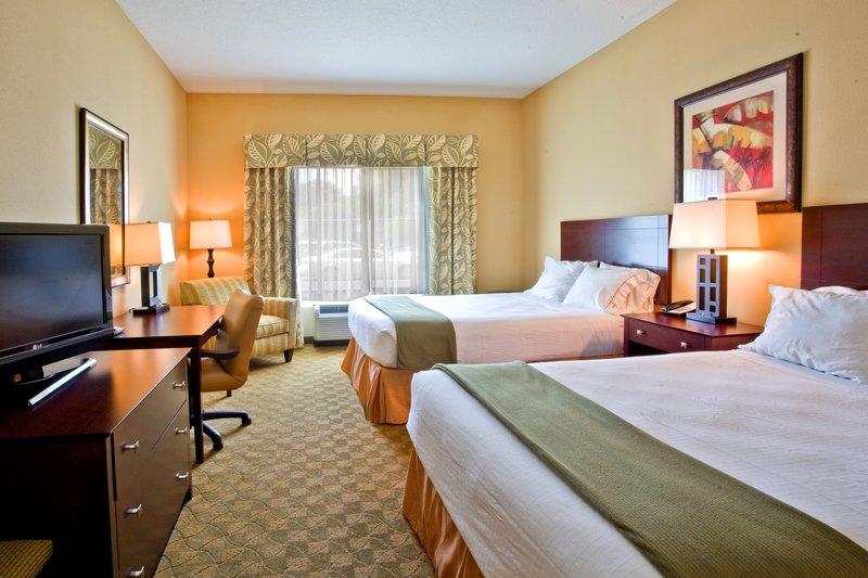 Holiday Inn Express Hotel & Suites USF-Busch Gardens Vista de la habitación