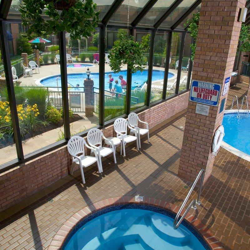 Holiday Inn St. Louis - South I-55 Vista da piscina